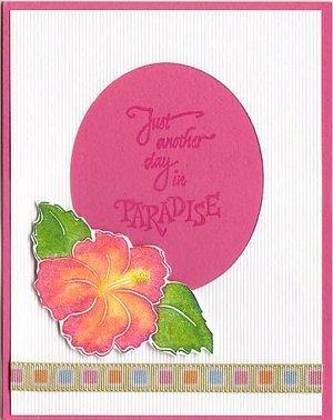 Paradise_renee_3