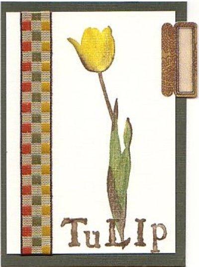 Pod_atc_swap_tulip_tab